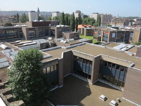 Erasmus University College, Brussels (B)
